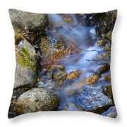 Trickle Throw Pillow