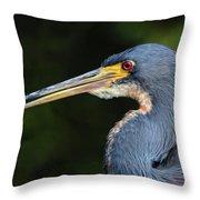 Tricolor Heron Portrait Throw Pillow