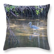 Tricolored Heron 1 Throw Pillow