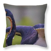 Tricolored Heron About To Fly Throw Pillow