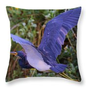 Tricolored Heron In Flight Throw Pillow