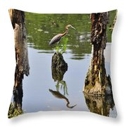 Tricolored Reflection Throw Pillow
