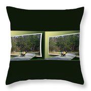 Trike Wave - Gently Cross Your Eyes And Focus On The Middle Image Throw Pillow
