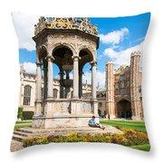 Trinity College Throw Pillow