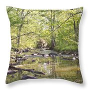 Trinity Foundry Throw Pillow