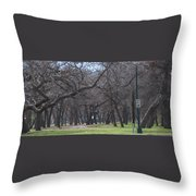 Trinity Park Ft Worth Tx Throw Pillow