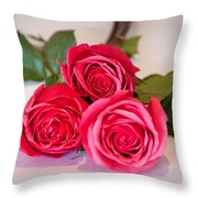 Trio Of Pink Roses Throw Pillow