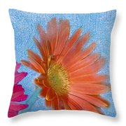 Triptych Gerbera Daisies-three Throw Pillow