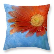Triptych Gerbera Daisy-one Throw Pillow
