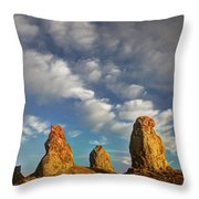 Trona Pinnacles 5 Throw Pillow