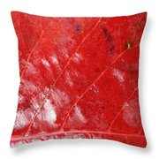 Tropical Almond Leaf 3 Throw Pillow