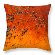 Tropical Almond Leaf With Sand 1 Throw Pillow
