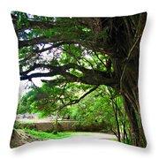 Tropical Banyan Path Throw Pillow