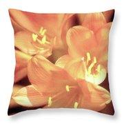 Tropical Glow Throw Pillow