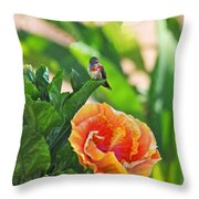 Tropical Hummer Throw Pillow