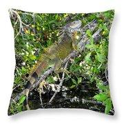 Tropical Iguana Throw Pillow