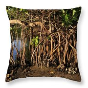 Tropical Mangroves Throw Pillow