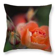 Tropical Orange Throw Pillow