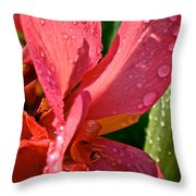 Tropical Rose Canna Lily Throw Pillow