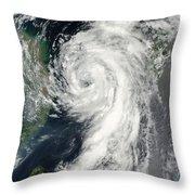 Tropical Storm Dianmu Throw Pillow