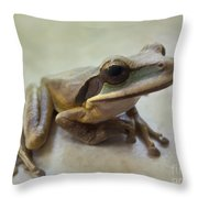 Tropical Tree Frog II Throw Pillow