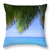 Tropical View Throw Pillow