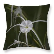 Tropical White Spider Lily Throw Pillow