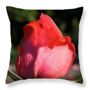 Tropicana Pink  Throw Pillow