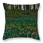 Trout Lilies On Forest Floor Throw Pillow by Steve Gadomski