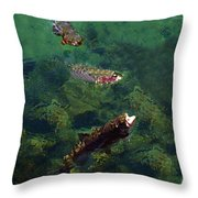 Trout Rising To Feed Throw Pillow