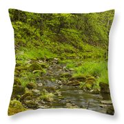 Trout Run Creek 4 Throw Pillow