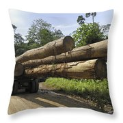 Truck With Timber From A Logging Area Throw Pillow