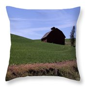 True Country Barn Throw Pillow