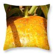 True Lemon Cucumber Throw Pillow