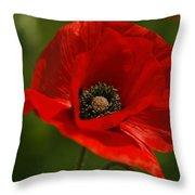 Truly Red Oriental Poppy Wildflower Throw Pillow