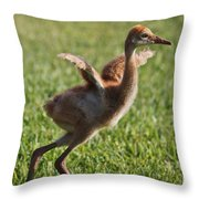 Trying To Fly Throw Pillow