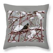 Tuft Winter Throw Pillow