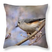 Tufted Titmouse - On The Slope Throw Pillow