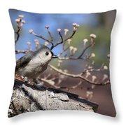 Tufted Titmouse - Bird - Color In Shadows Throw Pillow