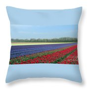 Tulip And Hyacinth Fields In Holland. Panorama Throw Pillow