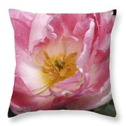 Tulip Angelique Throw Pillow