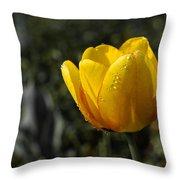 Tulip Drops Throw Pillow