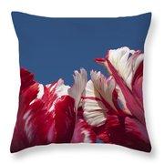 Tulip Estella Reinfeld Throw Pillow