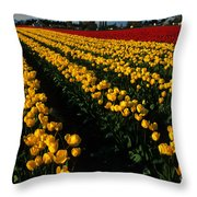 Tulip Fields Forever Throw Pillow