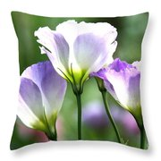 Tulip Gentian Flowers Throw Pillow