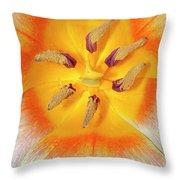 Tulip Interior Throw Pillow