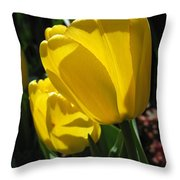 Tulip Named Big Smile Throw Pillow