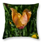Tulip Opening Throw Pillow