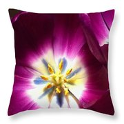 Tulip Overture Throw Pillow