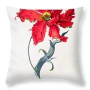 Tulip Perroquet Rouge Throw Pillow
